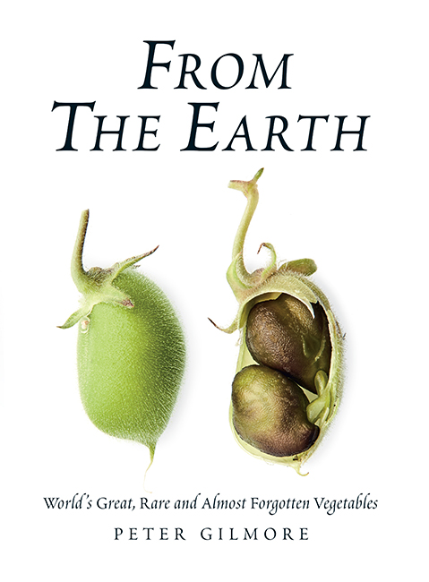 from the earth_final