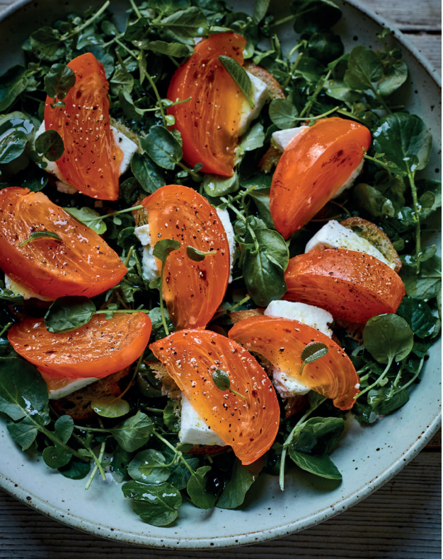 Persimmon, goats cheese and landcress salad from Sabor