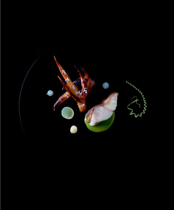 Grouper  Rosemary  Salsify - Copyright Eduardo Torres.jpg